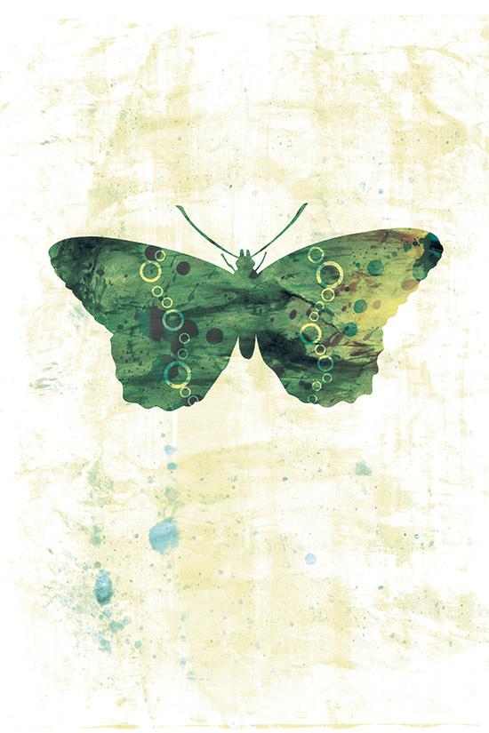 Green Butterfly Art Print - 5 x 7 - Jackie, Home Decor, Nursery Art, Fine Art Print, arthemis butterfly